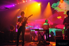 Mgmt 4
